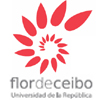 Flor De Ceibo
